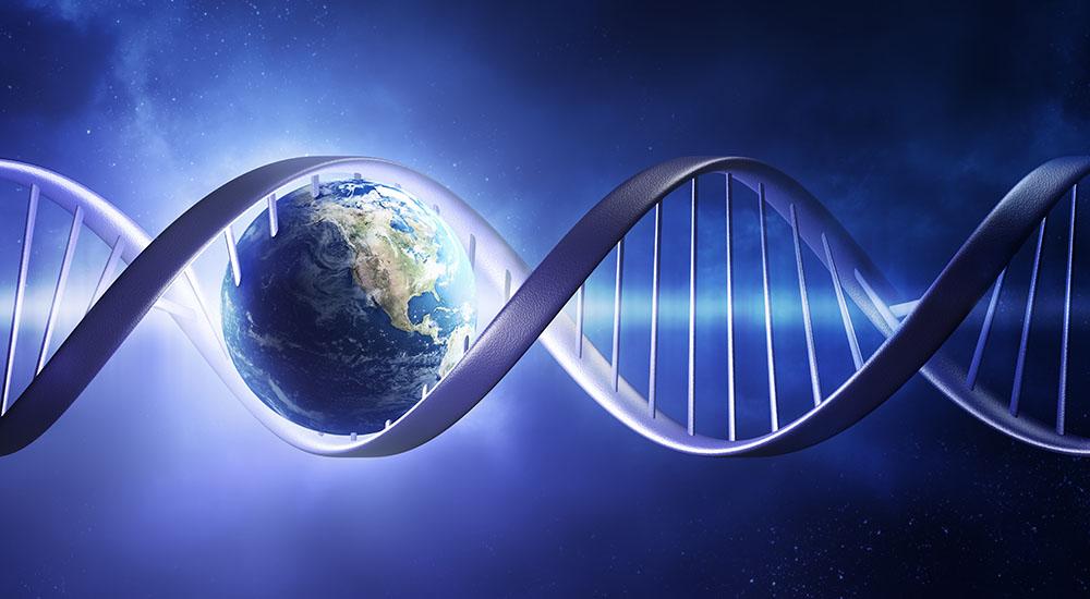 Эволюция и происхождение болезней