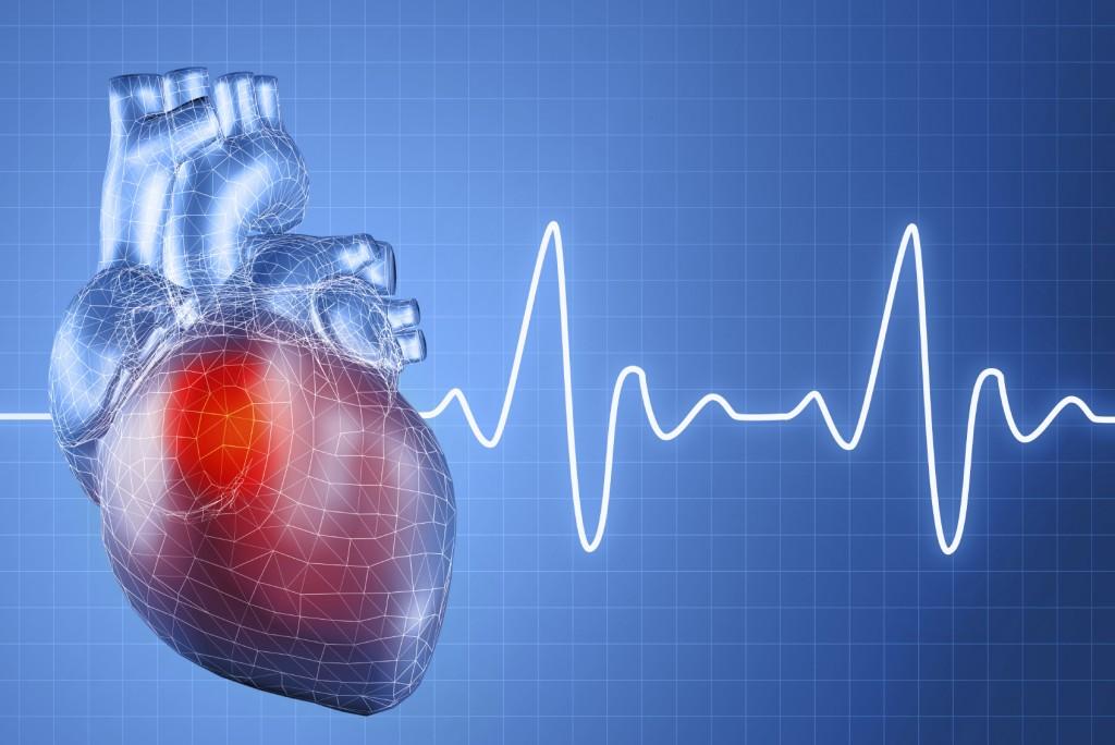 Правильный ритм сердца