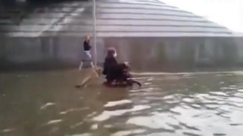 В Лиде инвалид на коляске застрял после ливня. Собака помогла хозяину выбраться.