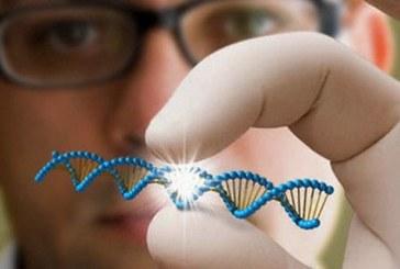 Новые современные технологии в терапии нейромышечных заболеваний, направленные на замедление их прогрессирования