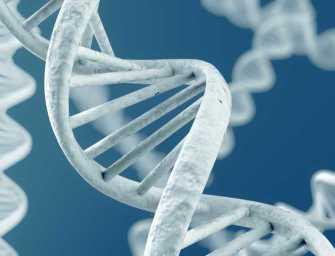 В геноме человека обнаружены тысячи новых генетических вариантов