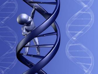 Геномное редактирование поможет скорректировать генетические мутации для будущих поколений