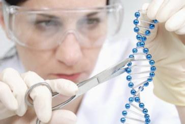 Разработана новая программа сверхбыстрого анализа геномов