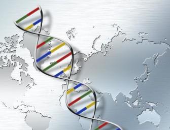 Штамп в генетическом паспорте