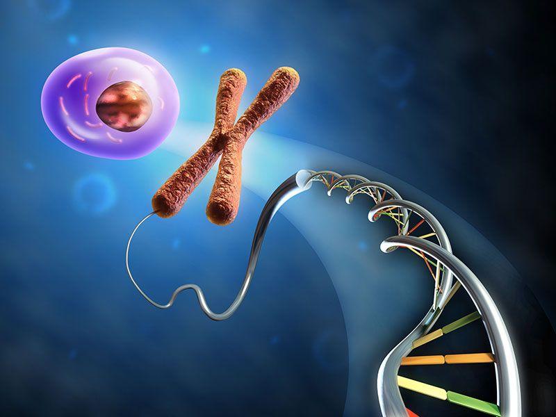 Ранняя диагностика и Генетические основы спинальной мышечной атрофии