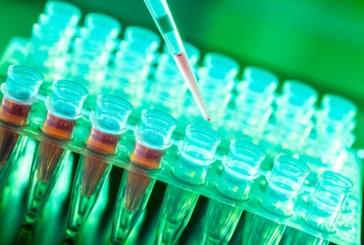 Genentech \ PTC сообщает о приостановке клинической разработки препарата RG7800 для терапии СМА