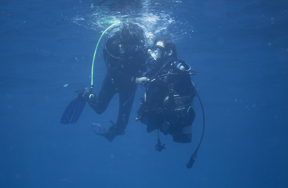 we-went-on-a-historic-shark-dive-with-a-quad-amputee-bod_003