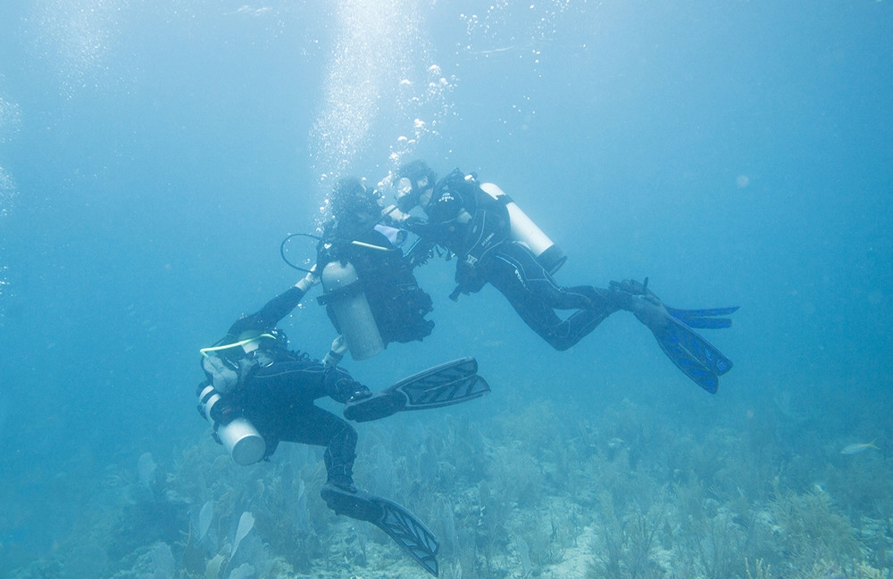 we-went-on-a-historic-shark-dive-with-a-quad-amputee-bod_007