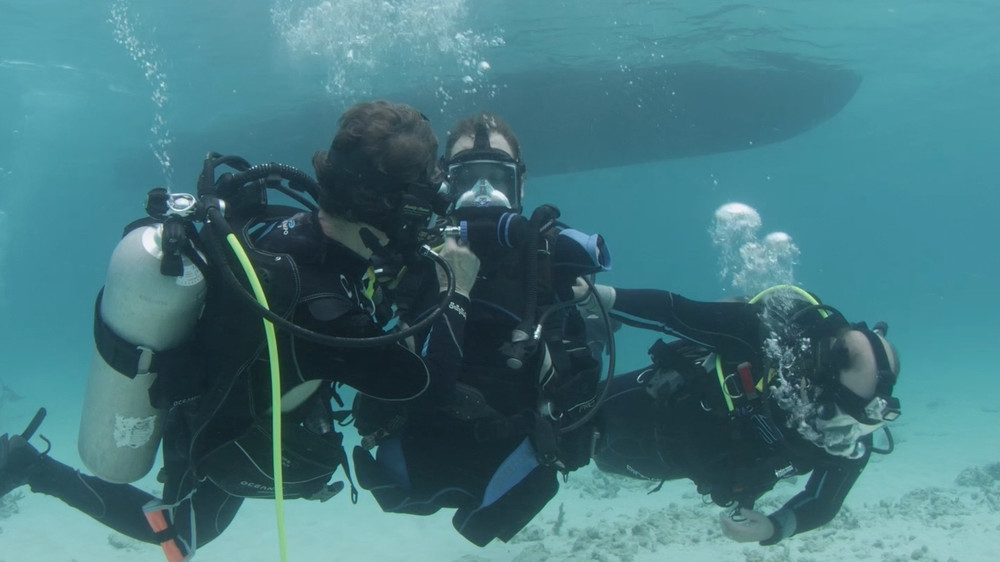 we-went-on-a-historic-shark-dive-with-a-quad-amputee-bod_008