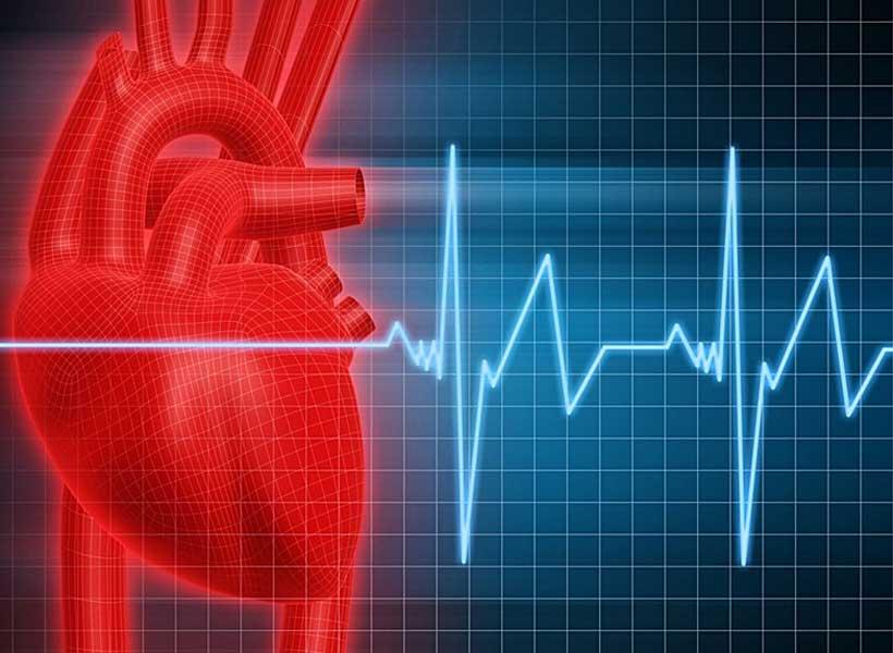 Обнаружен ген, ответственный за возникновение проблем с сердцем и нарушения в мышечной ткани