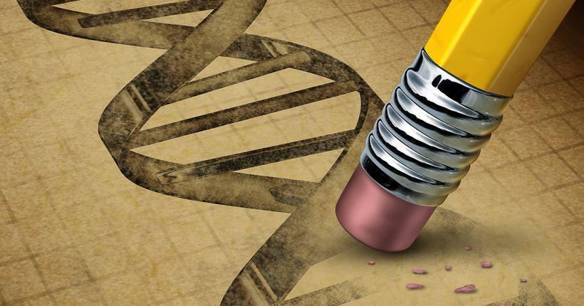 Битва за патент на метод генетического редактирования CRISPR