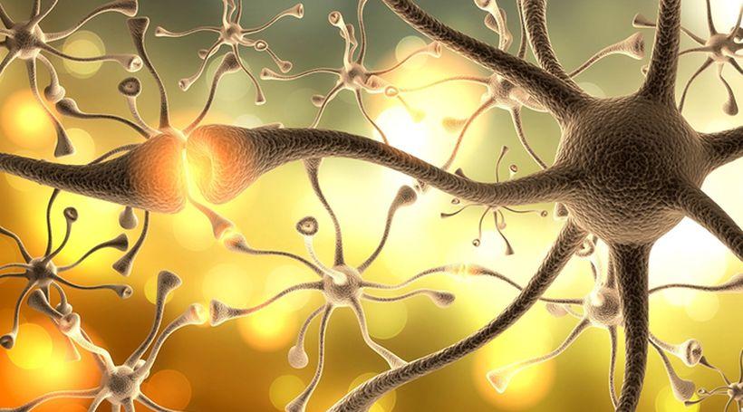 Лечение кортикостероидами мышечной дистрофии Дюшенна, доклад по разработке руководства подкомитета Американской академии неврологии