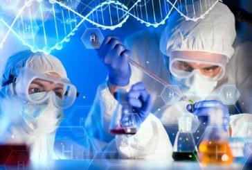 Как выявить и сохранить стволовые клетки в лаборатории?