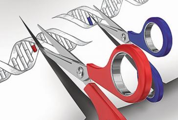При помощи CRISPR впервые удалось провести генную терапию у взрослого млекопитающего