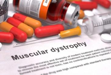 Мышечная дистрофия Дюшенна может быть приостановлена препаратом от рака.