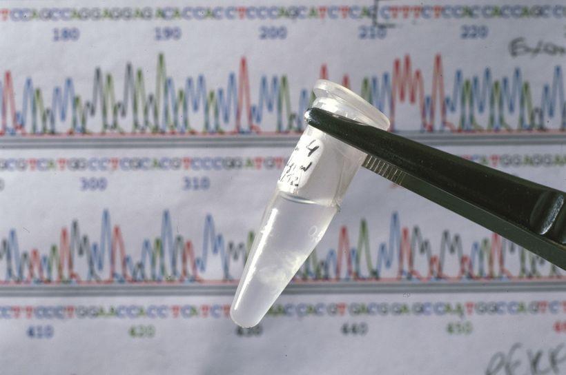 В США разрешили генетические эксперименты на людях