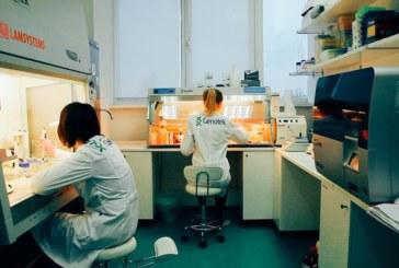 ДНК на дому: у них и у нас