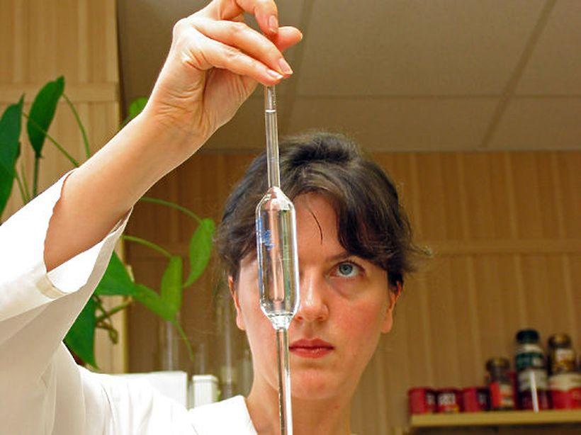 В Нидерландах будут выращивать для опытов человеческие эмбрионы