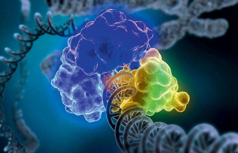 Как человека исправляют с помощью генов бактерий: подробно о сложном