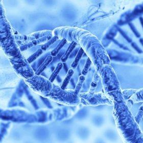 DNA-generic-840x470