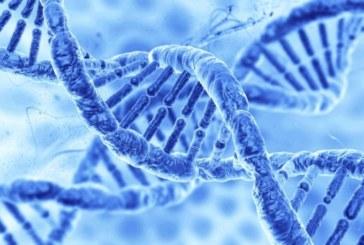 Компания AveXis выпустила новые перспективные данные по безопасности и эффективности генной терапии AVXS-101