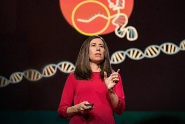 Эллен Йоргенсен: Всё, что вам нужно знать о CRISPR