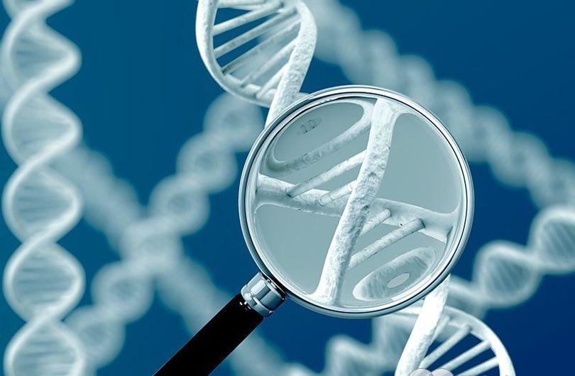 Наследственные болезни: Как происходит наследование генетических заболеваний.