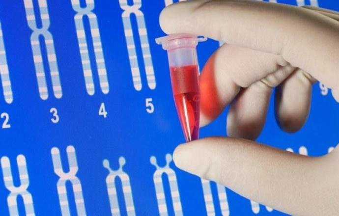КФК в крови: Что это такое, причины повышения уровня фермента.