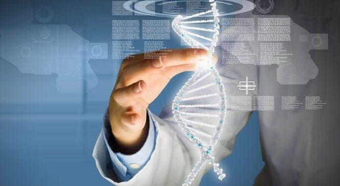 Исследователи обнаружили новый подход к поиску лечения генетических заболеваний