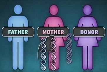 Один папа и две мамы. Ребенок от трёх родителей как прорыв в медицине