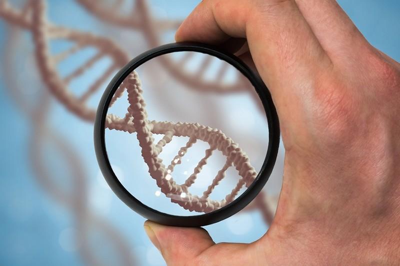 Пять фактов о ДНК, которых вы еще не знали