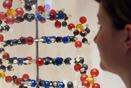 Ученые хотят узнать мнение россиян по вопросу использования ДНК