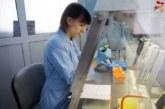 Генетический тест расскажет о болезнях и стрессах