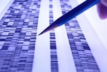 Создан метод генетической криптографии