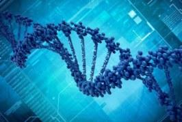 Хакеры впервые взломали компьютер с помощью ДНК