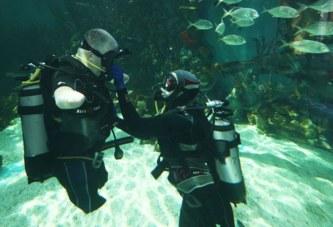 Подводный вызов Дмитрия Павленко