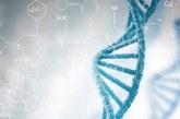 В Беларуси выдано уже 10 тыс. генетических паспортов