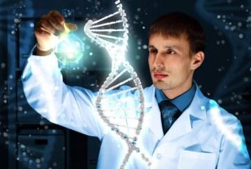 Эмбрион человека впервые избавили от дефекта при помощи коррекции ДНК