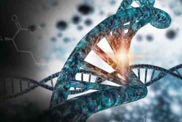 Российские ученые разработали микрокапсулы для редактирования генома