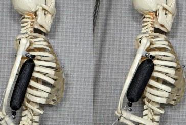 Искусственные мышцы сделают человека в три раза сильнее