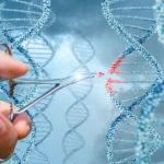 Генами можно управлять. Раскрыты уникальные возможности генной инженерии