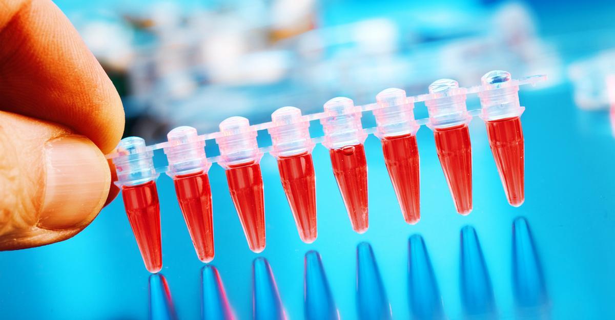 О чем расскажет анализ крови