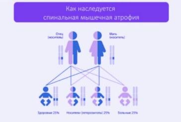 «Школа родителя» — СМА причина и диагностика