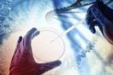 Специалистам удалось исправить опасную «поломку» в геноме человеческого эмбриона
