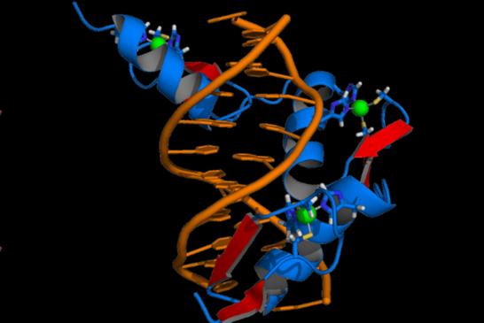 Геномное редактирование впервые опробовали на живом человеке