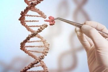 Чем грозит человечеству возможность редактировать гены
