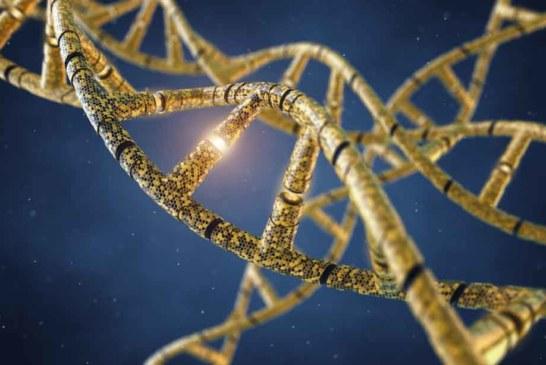 AveXis: генная терапия спинальной мышечной атрофии …демонстрирует вдохновляющие результаты. Главное, чтобы надолго.