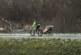 Без автобуса. Минчанин зимой на велосипеде возит дочку с ДЦП на учебу и проезжает по 20 км в день