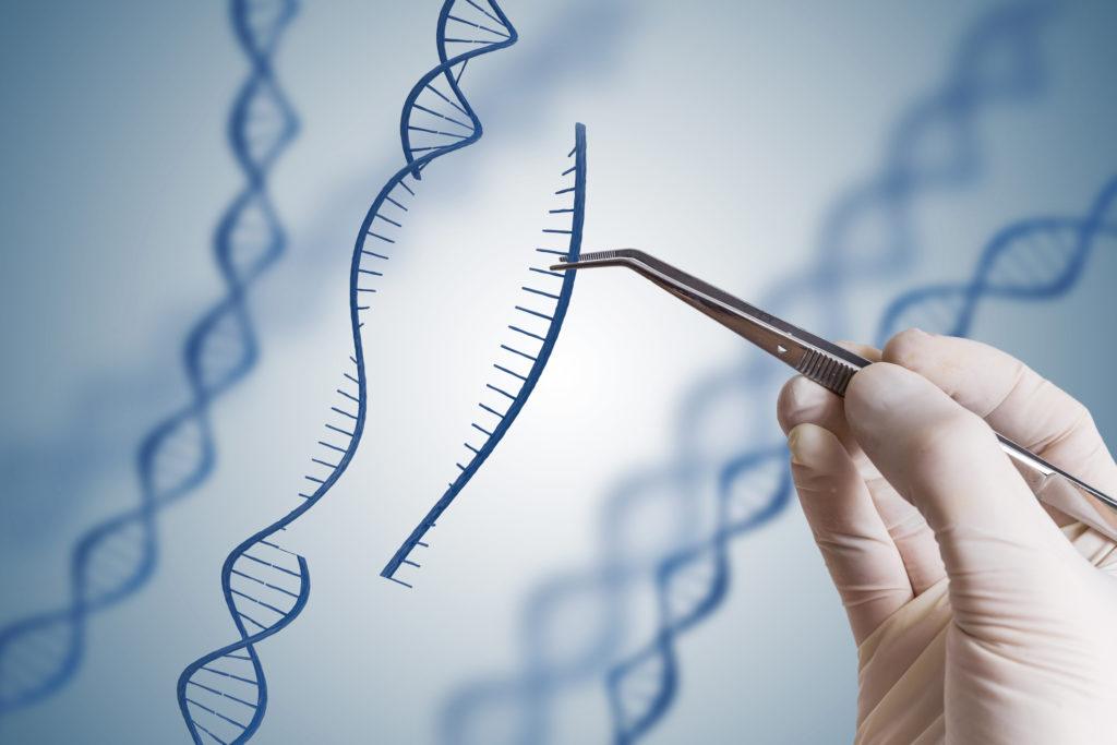 CRISPR : Перспективный метод редактирования генов может не работать на людях