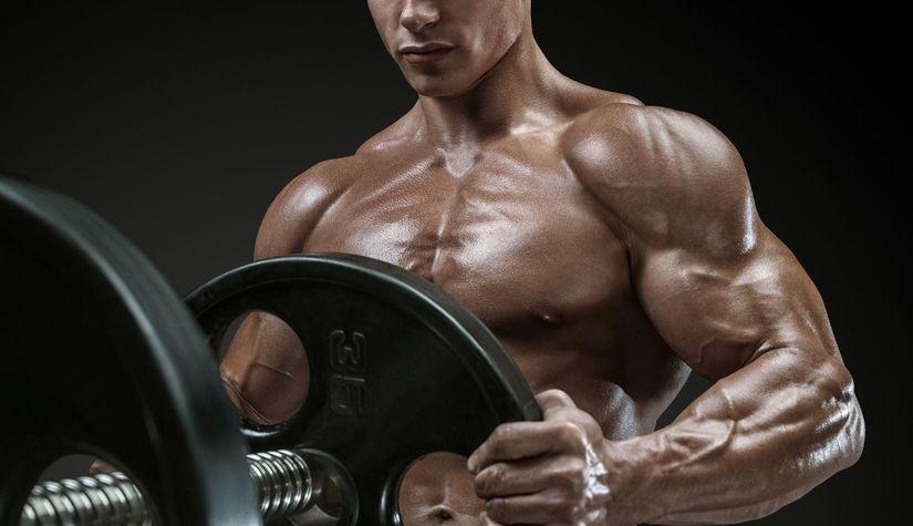 Обнаружены новые механизмы формирования мышц